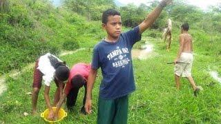 Lluvia de peces en Yoro - Honduras