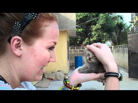 Christina MyersPurina Cat Chow Correspondent