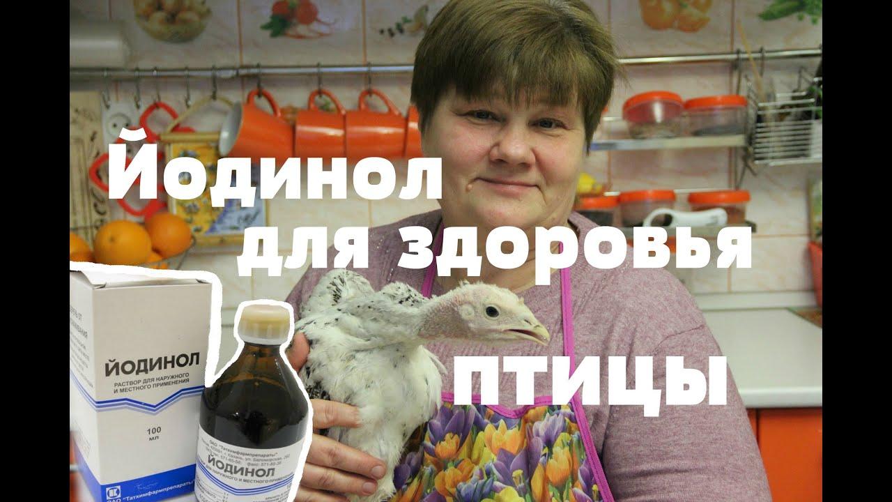 Йодинол! И Ваша птица будет здорова!