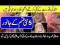 5 Strangest CREATURES Taken On Video  - Urdu Documentaries - Purisrar Dunya