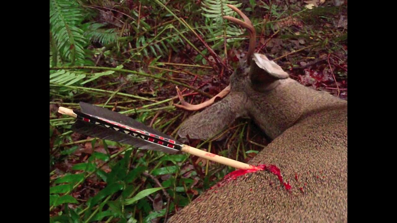 Primitive Archery Hunting for Deer  Otzi Arrow  Ishi Arrow  Traditional  Bowhunting