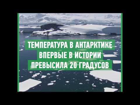 Самый быстрый по нагреву материк: что происходит в Антарктиде