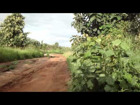 Road from Juba to Yei in South Sudan Africa 14