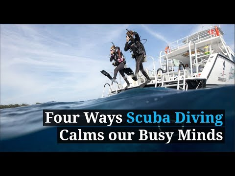 PADI | Diving Calms our Busy Minds