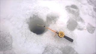 Темников   рыбалка 2014