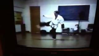 Seirenkai Karate Pinan Yondan