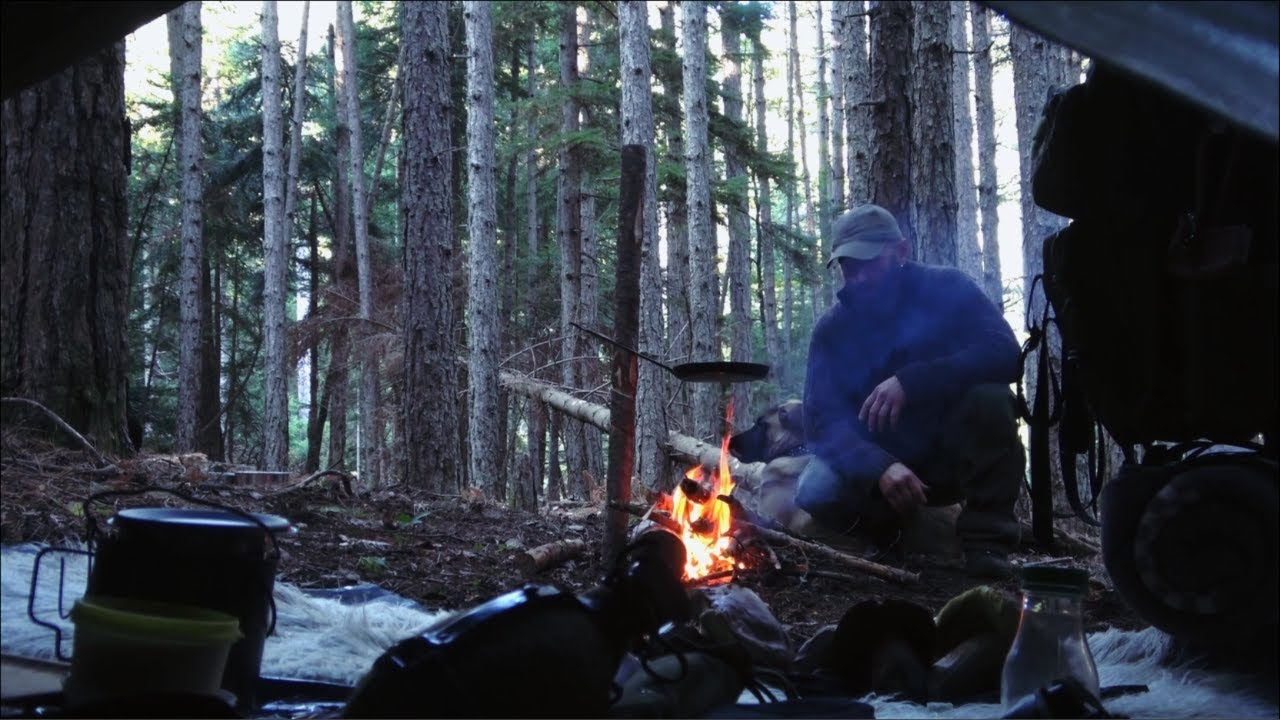 Bushcraft in the forest, mushroom picking and cooking, adjustable pan hanger, tarp tent shelter