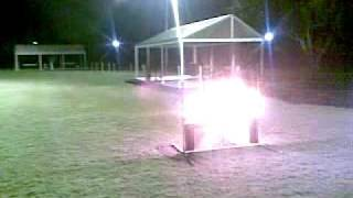 Brisbane Centre For Dogs - Leo The Wonder Dog - Gsd Jumping Over Fire