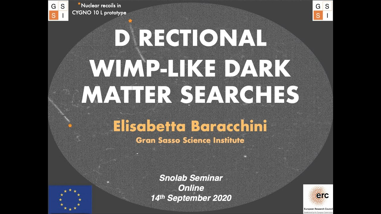 Elisabetta Barracchini - Directional WIMP-like dark matter searches - 14 September 2020