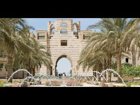 AUC School of Business - CEMS Video