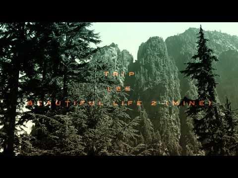 Trip Lee - Beautiful Life 2 (Mine)