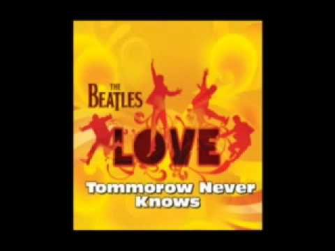 The Beatles(LOVE) - Within You, Without You