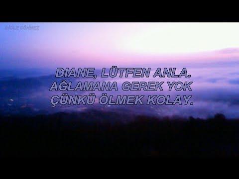 Nomy - Goodbye Diane (Türkçe Çeviri)