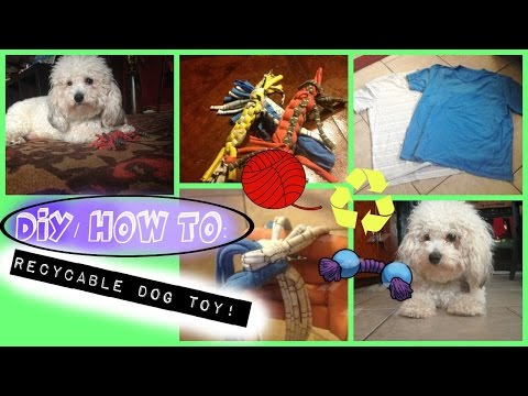 diy:-recyclable-dog-toy!!-(easy!)