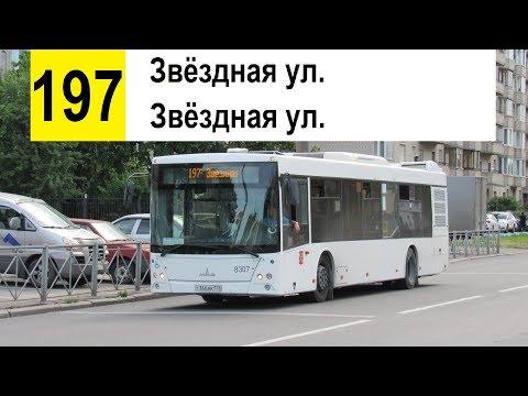 """Автобус 197 """"Звёздная ул. - Звёздная ул."""" (Кольцевой)"""