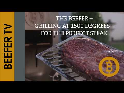 beefer xl grill