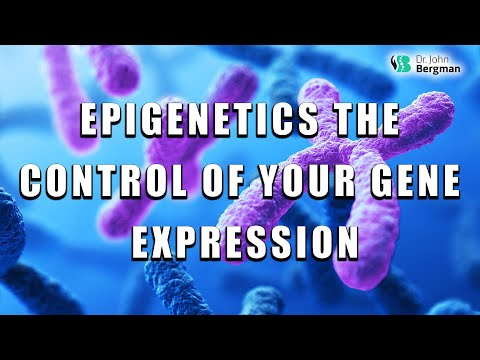 Epigenetics the Control of Your Gene Expression