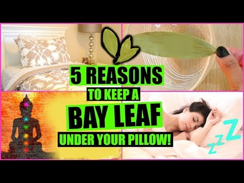 5 REASONS TO SLEEP WITH A BAY LEAF UNDER YOUR PILLOW