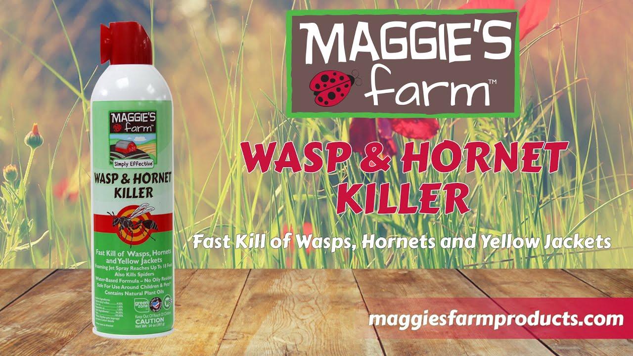 Simply Effective Wasp & Hornet Killer