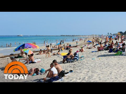Florida Reports More The 8,500 New Coronavirus Cases; US Cases Exceed 2.5 Million | TODAY