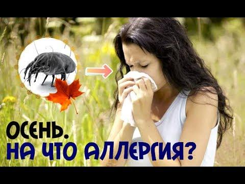 На что может быть аллергия осенью в сентябре? Основные аллергены осенью!