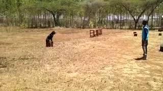 Rottweiler Obedience Dog Training In Kenya