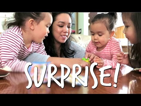 A SURPRISE IN THE BOX! - April 27, 2017 -  ItsJudysLife Vlogs