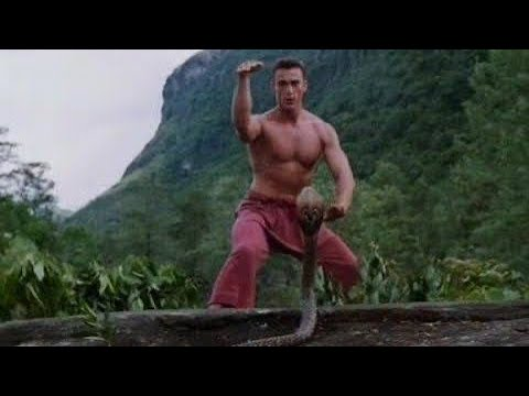 Download Bloodsport 3 fight scene 1 (1996) Daniel Bernhardt Rhys-Davies martial arts  action movie archives