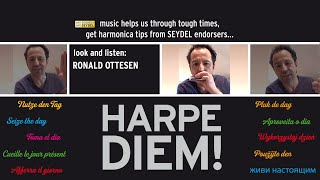 HARPE DIEM! Tongue block exercise by Ronald Ottesen - SEYDEL
