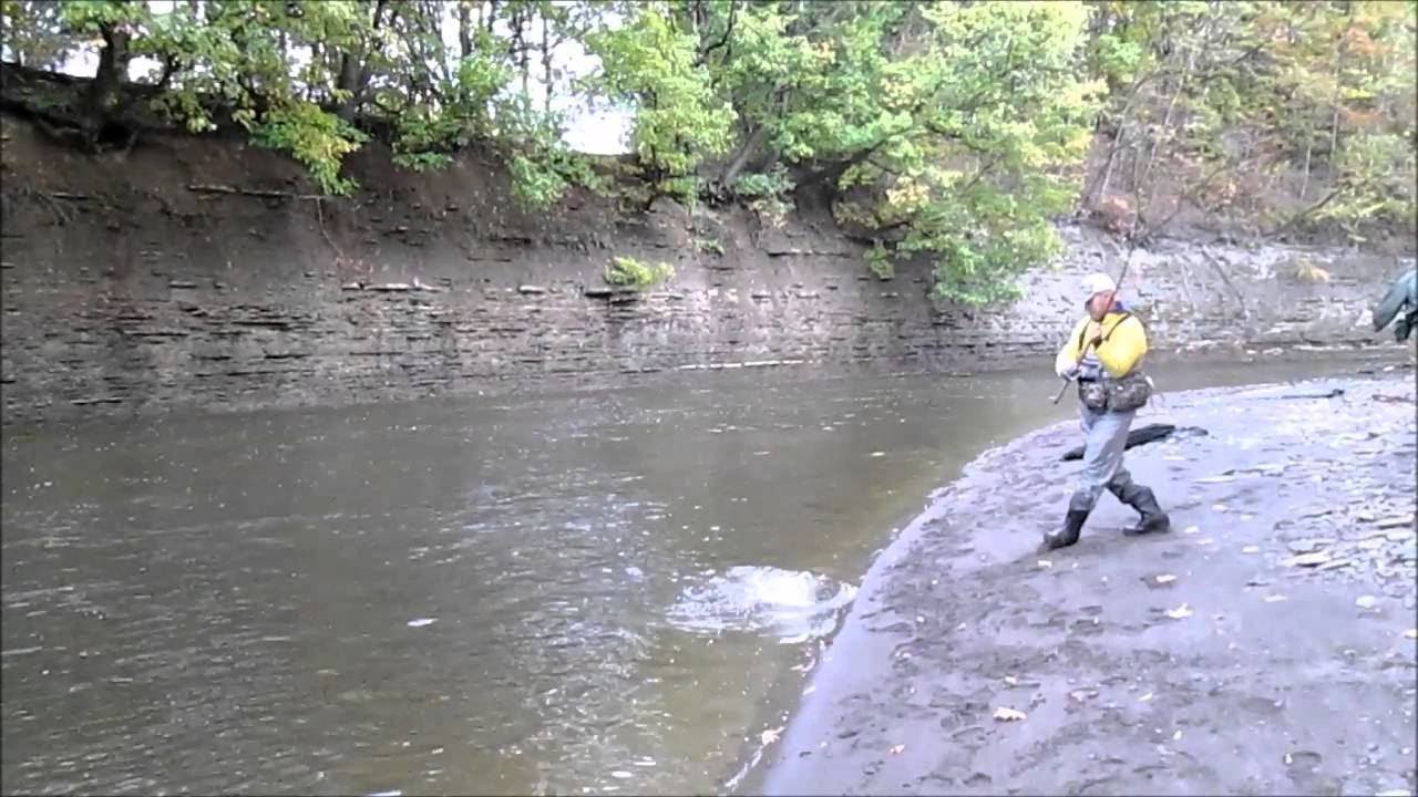 erie steelhead fishing october 21 2013 youtube