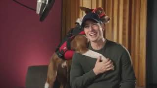 Chris Evans with doggos for 6 minutes straight.