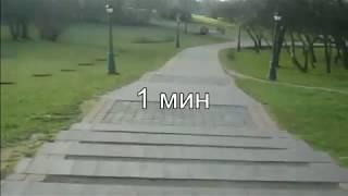 Бег по парку весной(видео для беговой дорожки)