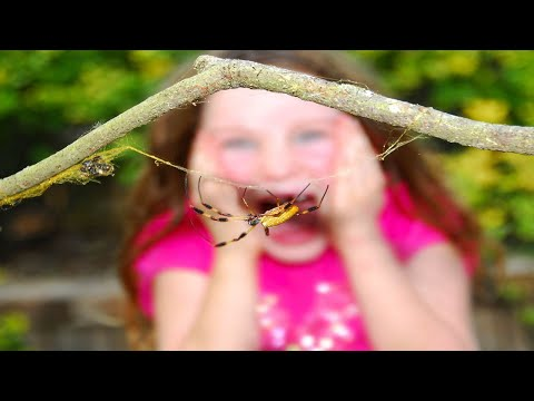 How to Deal with Your Child's Phobias | Child Anxiety