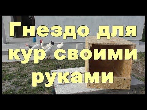 видео: Гнездо для кур своими руками