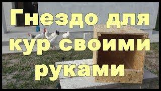 видео Гнезда для уток своими руками: фото, размеры