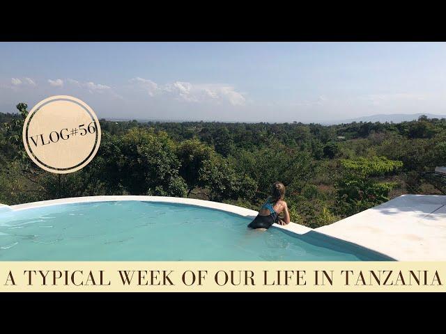 A typical week of our life in Tanzania   Daily life ǀ Makasa Tanzania Safari ǀ VLOG #56