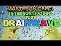 Audio Brainwave Teraphy Kecerdasan Otak Pleci Supaya Pleci Lebih Cepat Menangkap Masteran  Mp3 - Mp4 Download