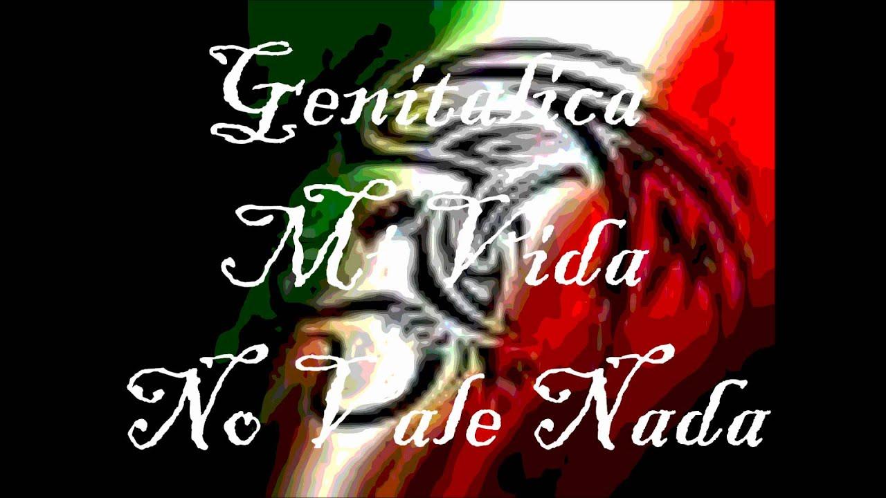 Genitallica - Mi Vida No Vale Nada Video Oficial - YouTube