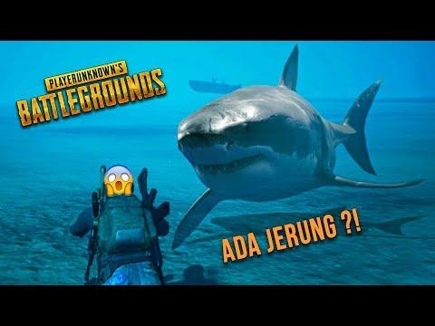 ADA JERUNG ?! (PUBG Malaysia) - Solo