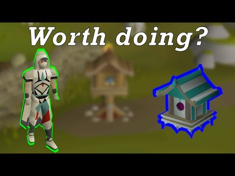 Should YOU be doing bird house runs? (fossil island) - OSRS