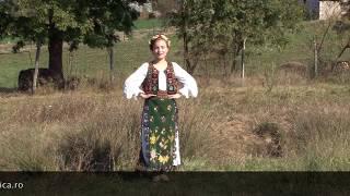 Download NOU 2018 - Cât îi Banatul Banat - Alexandra Tofalvi (elev Nicoleta Voica-Bagiu)