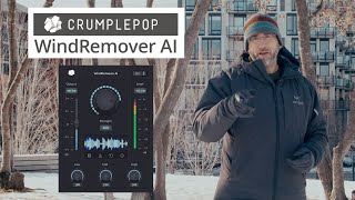 Remove Wind Noise from your Audio - Plugin for FCP X, Premiere Pro, Audition & DaVinci Resolve