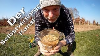 Eigenes Brot aus eigenem Getreideanbau
