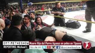Momento Muere Hijo del Perro Aguayo en pelea en Tijuana - Perro Aguayo Ultima pelea vs Rey Mysterio