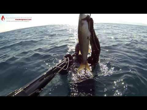 Ilias Zarotiadis - Spearfishing At Underwater Freshwater Springs