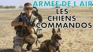REPORTAGE  ARMEE DE L'AIR : LES CHIENS COMMANDOS