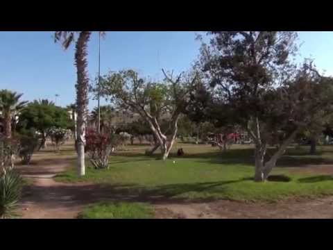Arica Travel Video