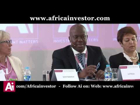 Sibusiso Luthuli speaks at the Ai Pension and Sovereign Wealth Fund Leaders' Summit 2017 Roundtable