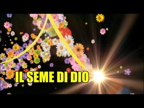 """""""IL SEME DI DIO""""."""