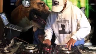 Gambar cover Return of the Scratch Dog pt1 (Masta Hanksta)